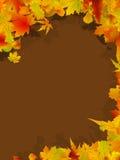 Thanksgiving day celebration. Stock Image