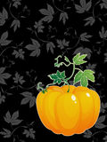 Thanksgiving Day celebration card. Ripe  pumpkin  with green leaves greeting card for Thanksgiving Day Royalty Free Stock Photography
