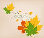Thanksgiving Day. Colorful maples leaves and stylish text Give Thanks Stock Photos