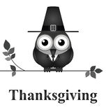 Thanksgiving Day. Comical bird Thanksgiving Day message isolated on white background Stock Image