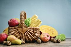 Thanksgiving day concept. Wicker basket with apples, pears, pumpkin, nuts and bitter melon on blue background Royalty Free Stock Image