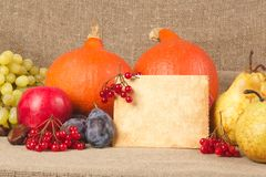 Thanksgiving day congrats Royalty Free Stock Image