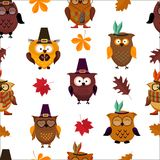 Thanksgiving Day  cute owl background Royalty Free Stock Image
