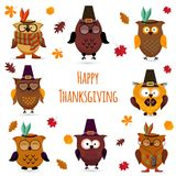 Thanksgiving Day  cute owl set Royalty Free Stock Photos