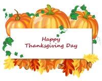 Thanksgiving Day Design Stock Photos