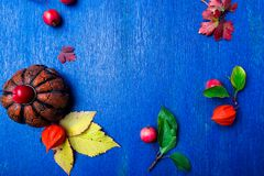 Thanksgiving Day frame. Leaves, pumpkin  and small apple around on wooden blue rustic background. Top view. Copy space. Flat lay. Royalty Free Stock Photos