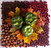 Thanksgiving Day. Happy thanksgiving background images. Thanksgiving beautiful food image. This is a picture for designers and print stock photo