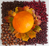Thanksgiving Day. Happy thanksgiving background images. Thanksgiving beautiful food image. This is a picture for designers and print stock images