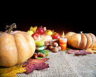 Thanksgiving day harvest Stock Image