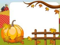 Thanksgiving day horizontal frame big pumpkin countryside Royalty Free Stock Image