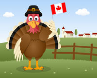Thanksgiving Day Scene - Turkey Canada Royalty Free Stock Photo
