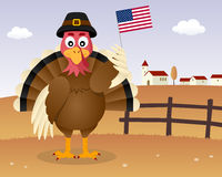 Thanksgiving Day Scene - Turkey USA Flag Royalty Free Stock Photos