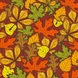 Thanksgiving Day Seamless Pattern With Autumn Leaves Of Trees. Bright Season Stock Photo