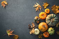 Thanksgiving day or seasonal autumnal background with pumpkins a. Nd fallen leaves on stone background. Copy space for text royalty free stock photography