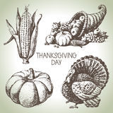 Thanksgiving Day set. Hand drawn vintage illustrations Royalty Free Stock Photo