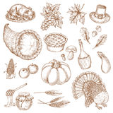 Thanksgiving day sketched symbols for greeting Royalty Free Stock Photo