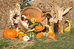 Thanksgiving Day spirit. Thanksgiving Day spirit - picture of bales of hay and assorted pumpkins, squashes, gourds, corncobs Thanksgiving Day Royalty Free Stock Photo