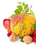 Thanksgiving day still life Royalty Free Stock Photography
