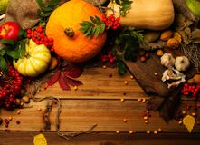 Thanksgiving day still life stock photos