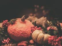 Thanksgiving day still life Stock Image