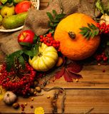 Thanksgiving day still life Royalty Free Stock Images