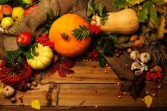 Thanksgiving day stilleven Royalty-vrije Stock Afbeelding