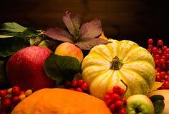 Thanksgiving day stilleven Stock Foto