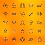 Thanksgiving Day Thin Line Icons Set Royalty Free Stock Photo