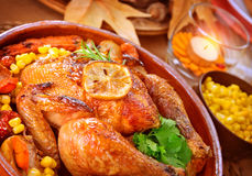 Thanksgiving day turkey Stock Images