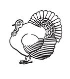 Thanksgiving day turkey hand drawn sketch icon. Thanksgiving day turkey sketch doodle icon for web, mobile and infographics. Hand drawn turkey vector icon Royalty Free Stock Image