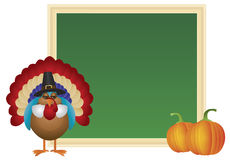 Thanksgiving Day Turkey Pilgrim Chalkboard Illustration Royalty Free Stock Images