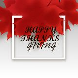 Thanksgiving day vector background with red autumn maple leaf isolated on wooden Royalty Free Stock Photo