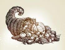 Thanksgiving day. Vintage cornucopia sketch vector illustration Stock Images