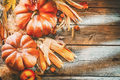 Thanksgiving dayachtergrond Oranje Pompoenen stock fotografie