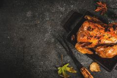 Thanksgiving dayvoedsel Royalty-vrije Stock Afbeelding