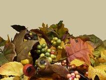 Thanksgiving de fond de chute Photo stock