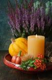 Thanksgiving decor Stock Photo