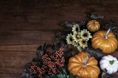 Thanksgiving decor background with pine cones with a mix of sunflowers, acorns, pumpkins and squash, guard, berries and leaves stock photos