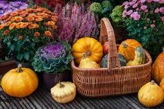 Thanksgiving decor in a garden Royalty Free Stock Image