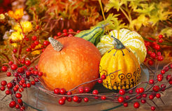 Thanksgiving Decoration Stock Photography