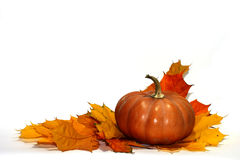 Thanksgiving decoration composition isolated Stock Photos