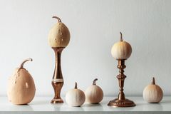 Thanksgiving decoration. Minimal autumn inspired room decoration. Selection of various pumpkins on white shelf. royalty free stock photo