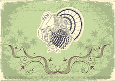 Thanksgiving decoration postcard Royalty Free Stock Photo