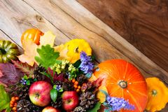 Thanksgiving decoration with pumpkin, apples, lilac flowers Royalty Free Stock Photo