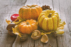 Thanksgiving decorations on rustic background. Thanksgiving decorations - pumpkins nuts oat pine cone apple candle, rustic wood background, toned Royalty Free Stock Photography