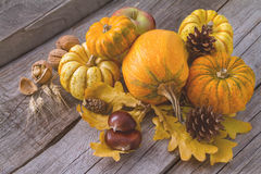 Thanksgiving decorations on rustic background. Thanksgiving decorations - pumpkins nuts oat pine cone apple, rustic wood background, toned Stock Photo
