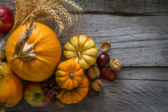 Thanksgiving decorations on rustic background. Thanksgiving decorations - pumpkins nuts oat pine cone apple, rustic wood background, top view Stock Photos