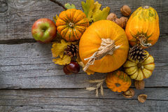 Thanksgiving decorations on rustic background. Thanksgiving decorations - pumpkins nuts oat pine cone apple, rustic wood background, top view Royalty Free Stock Image