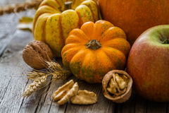 Thanksgiving decorations on rustic background. Thanksgiving decorations - pumpkins nuts oat, rustic wood background Stock Photos