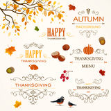 Thanksgiving Design Elements Stock Photography